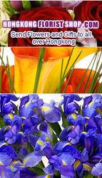 www.hongkongflorishopst.com