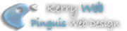 Web Design Kerry,  Pinguis Web Design,  Kerry Web Design