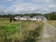 cottage Killarney 30 min to coast SUMMER OFFER